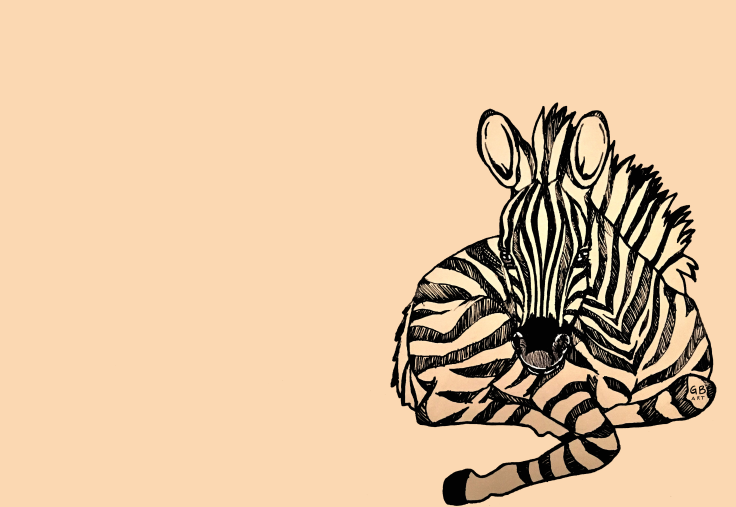 zebra neutral signed