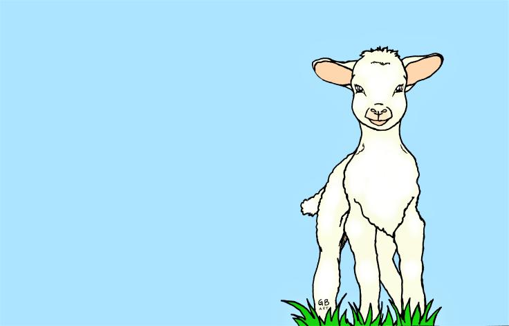 Lamb signed