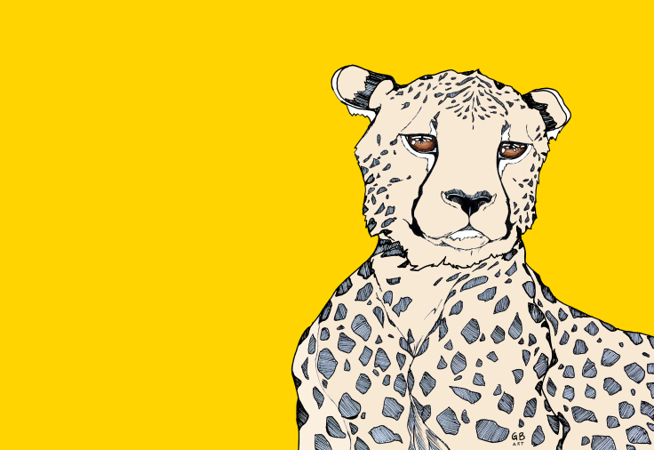 Cheetah yellow signed