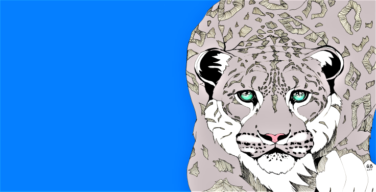 Snow leopard signed